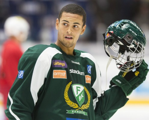 Unlike his fellow Swedish counterpart, Kylington spent time in Sweden's top professional league, the SHL. Andersson and Kylington both spent time in Sweden's second division.